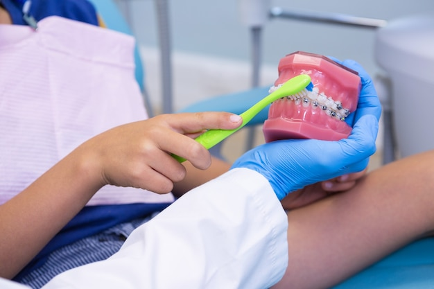 Beschnittenes bild des zahnarztes, der jungen lehrt, der zähne auf zahnersatz putzt