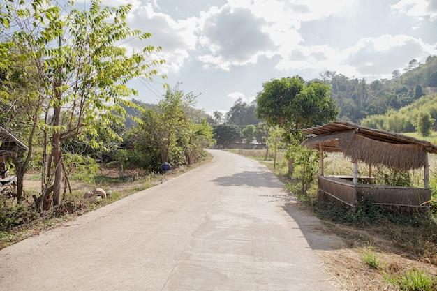 Betonstraße in grüner landschaft
