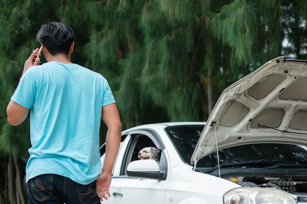 Betonter asiatischer mann, der handy verwendet, während das auto mit seinem reizenden hund aufgegliedert ist