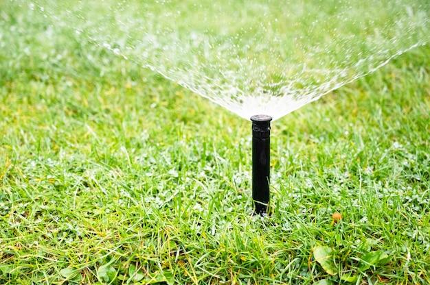 Bewässern, sprinklerkopf verteilt wasser auf gras
