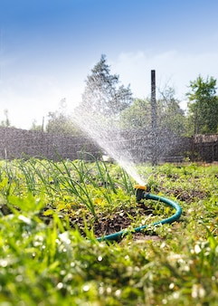 Bewässerung sprinklerschlauch für gartengeräte für bewässerungsanlagen. sprühwasser auf das gemüse.