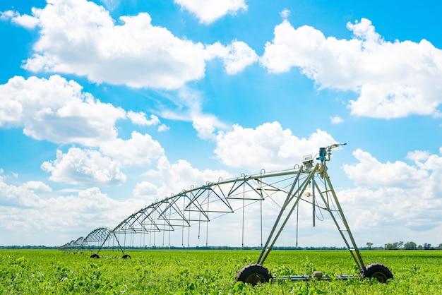 Bewässerung von ackerland zur sicherung der qualität der ernte. sonniger tag, sonnenlicht.