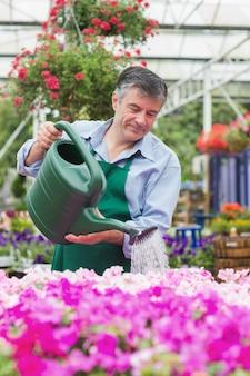 Bewässerungsblumen des lächelnden mannes