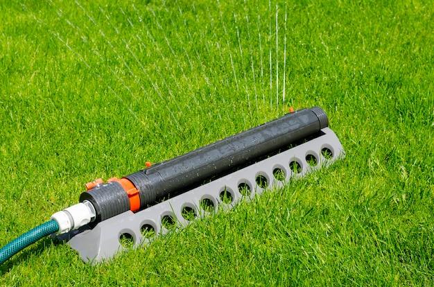 Bewässerungssystem, sprinkler, der wasser über rasen des grünen grases kastriert