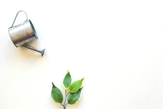 Bewässerungstopf über grünem Blatt