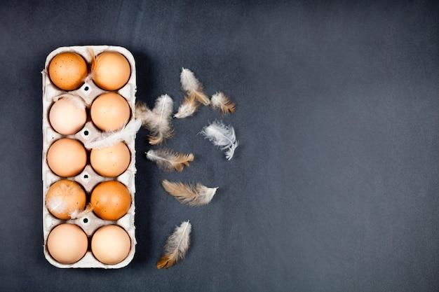 Bewirtschaften sie hühnereien im pappbehälter und in den federn auf schwarzem hintergrund.