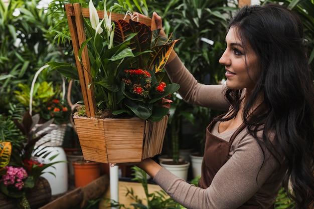 Bewundern topfpflanze der frau