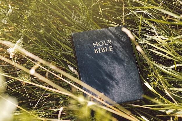 Bibel im grünen gras. die heilige bibel lesen. konzept für glauben, spiritualität und religion