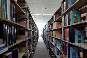 Bibliotheksraum Bildung zurück zur Schule