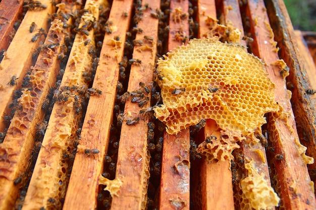 Bienen fliegen über die hölzerne wabe im bienenstock