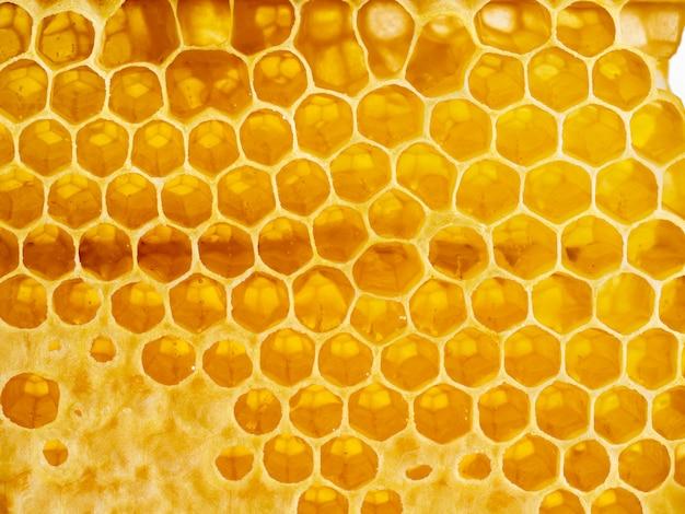 Bienenbienenwabennahaufnahme, frischer faseriger tropfender süßer honig