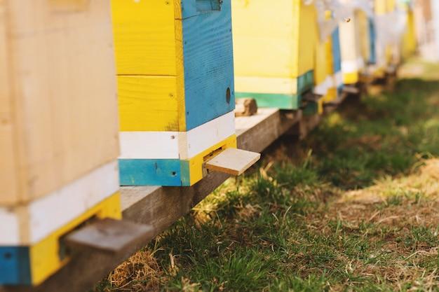 Bienenstockdetailabschluß oben.