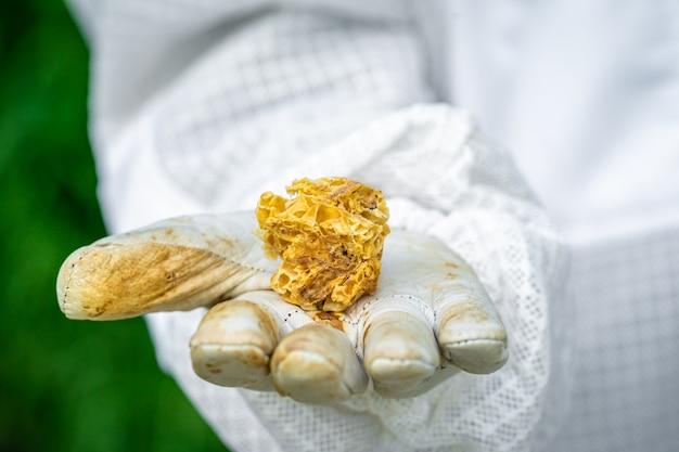 Bienenwachs in den händen des imkers