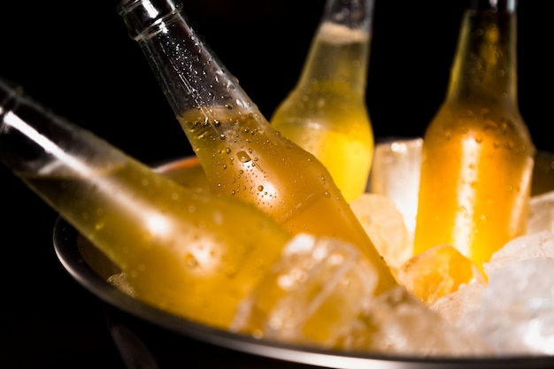 Bierflaschen mit eis