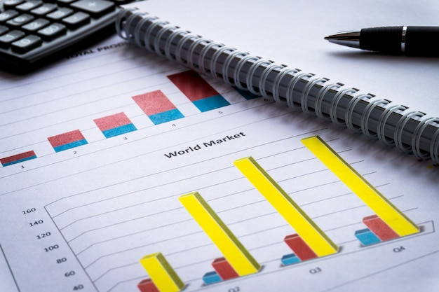 Bilanz im aktionärsberichtsbuch