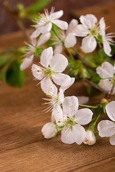 Bild des frühlingsweißkirschblütenbaums auf holztisch