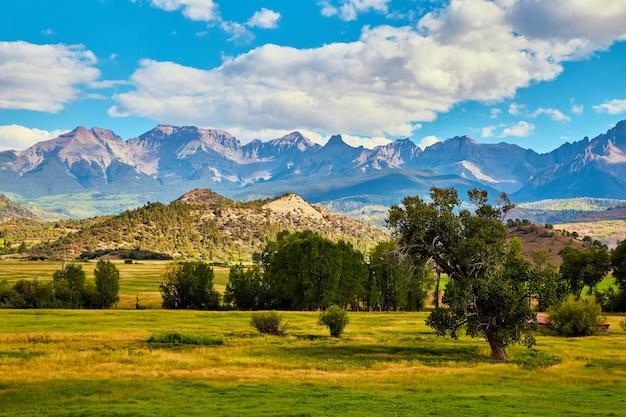 Bild des offenen feldes mit baumreihen und großen schönen bergen im hintergrund