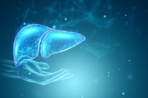 Bild eines hologramms einer ausgestreckten hand und leber. geschäftskonzept zur behandlung von hepatitis beim menschen, spende, prävention von krankheiten, online-diagnose. 3d-rendering, 3d-illustration.