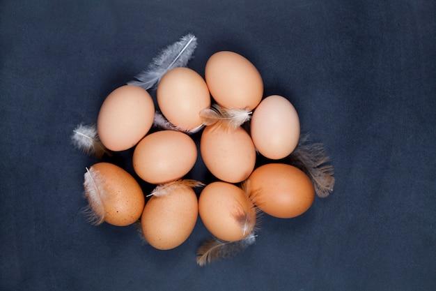 Bio-bauernhof hühnereien und federn.