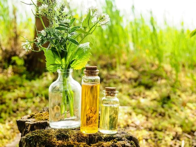 Bio-bio-alternativmedizin, kräutermedizin, flaschen mit gesundem ätherischen öl oder infusionen und trockenen heilkräutern.