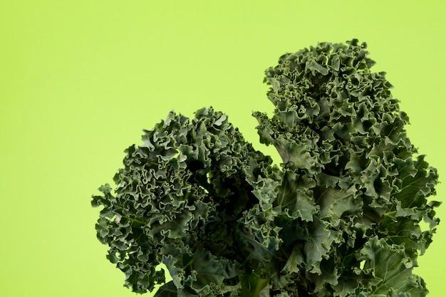 Bio-grünkohl (italienischer grünkohl, toskanischer grünkohl, dinosaurierkohl, lacinato). kohlblätter, nahaufnahme.