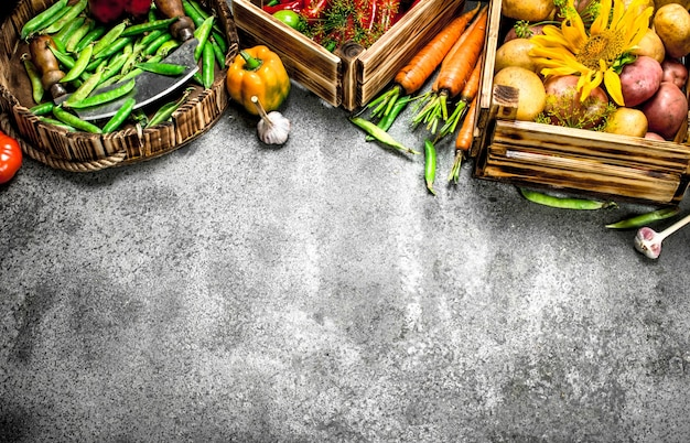Bio-lebensmittel. frische ernte von gemüse in kisten auf einem rustikalen tisch.