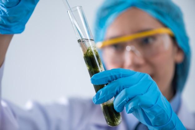 Biokraftstoff-forschungsprozess im labor, mikroalgen-photobioreaktor für alternative energieinnovation im erneuerbare-energien-labor