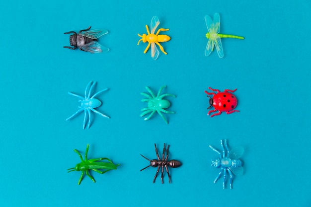 Biologie-fächerarrangement mit insekten