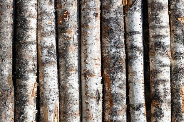 Birke meldet sich in reihen an. die bäume sind mit stapeln gestapelt. bauholz