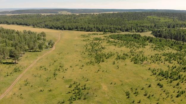 Birkenhain und wälder umgeben wiesen, die hügel und felder bedecken