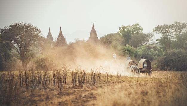 Birmanischer ländlicher mann, der hölzernen warenkorb mit heu auf der staubigen straße gezeichnet fährt