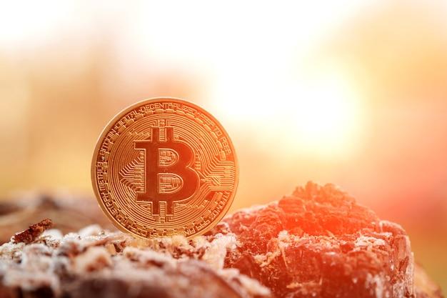 Bitcoin auf dem hintergrund der natur