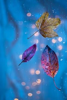 Blätter auf einem nassen glas
