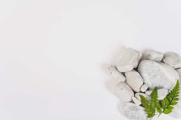Blätter auf haufen von steinen