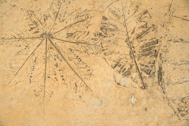 Blätter linie in zement auf braunem hintergrund