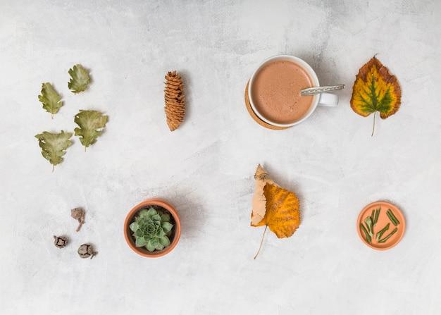 Blätter und sachen