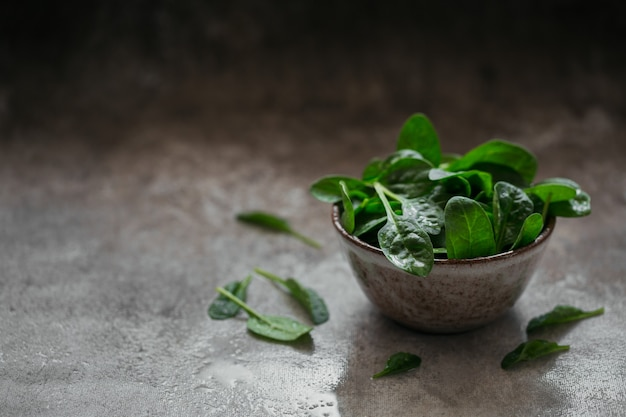 Blätter von frischem babyspinat in einer schüssel. dunkle organische grüne blätter. gesundes veganes lebensstilkonzept