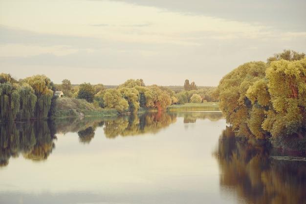 Blasse landschaft flussbäume im wasser mit reflexion european