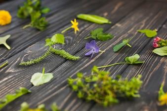 Blätter und Blumen auf hölzernem strukturiertem Hintergrund