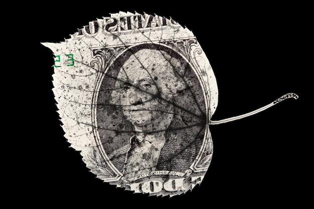 Blattform des amerikanischen dollars lokalisiert auf schwarzem hintergrund