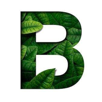 Blattguss b aus echt lebendigen blättern mit edler papierschnittform. leafs schriftart.