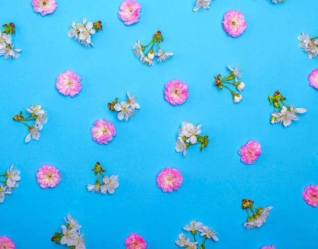 Blau mit blühenden weißen und rosa blüten