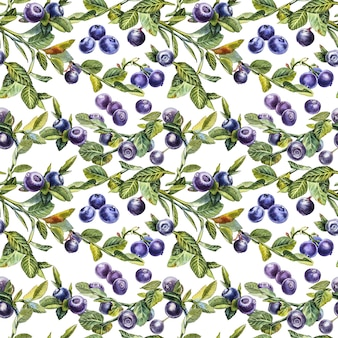 Blaubeere. nahtlose muster. botanische aquarellillustration