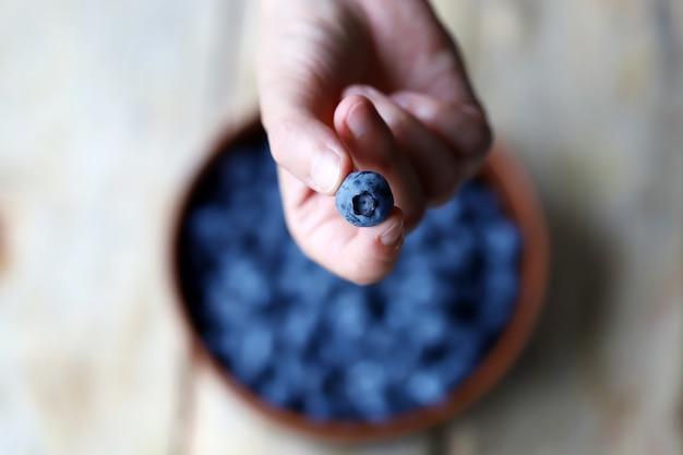 Blaubeeren bio-heidelbeeren