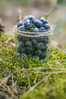 Blaubeeren im glas auf grünem gras konzept der gesunden ernährung heidelbeeren