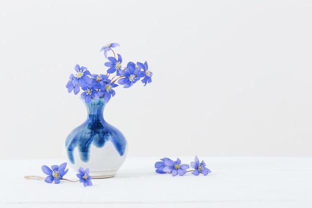 Blaue frühlingsblumen in der keramikvase auf weißem hintergrund