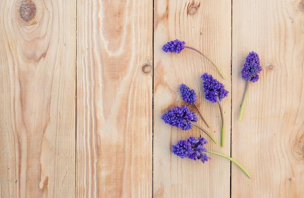 Blaue frühlingsblumen werden auf einem hölzernen hintergrund ausgelegt.