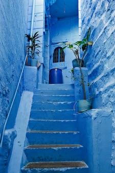 Blaue häuser in den straßen von jodhpur