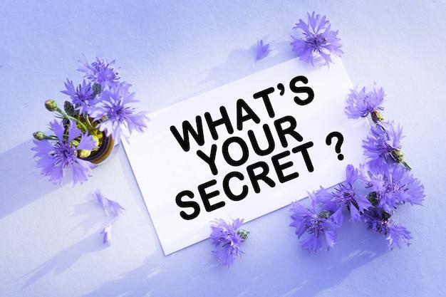 Blaue kornblume auf der leeren weißen grußkarte für glückwünsche.