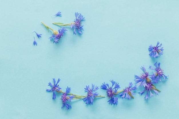 Blaue kornblumen auf blauem papierhintergrund